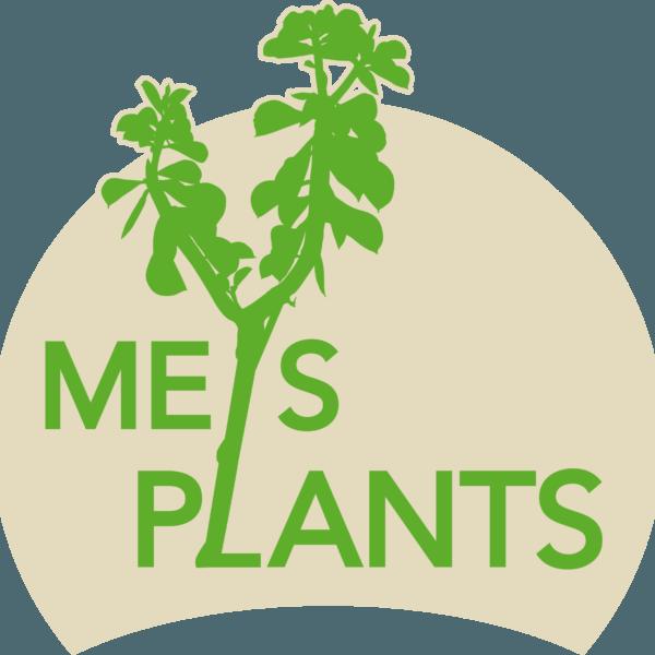 MEYS PLANTS